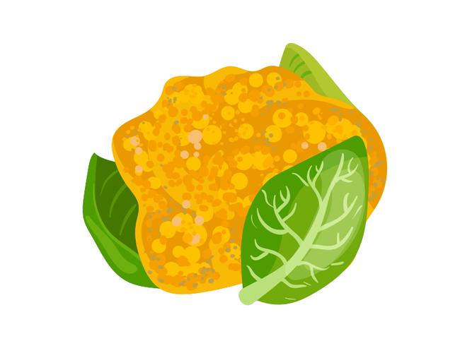 Cavolfiore Arancione- Az. Agr. Milani