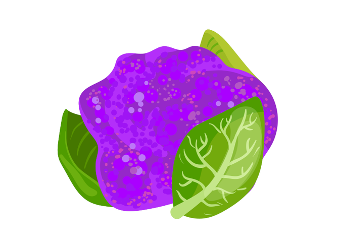 Cavolfiore viola - Az. Agr. Milani