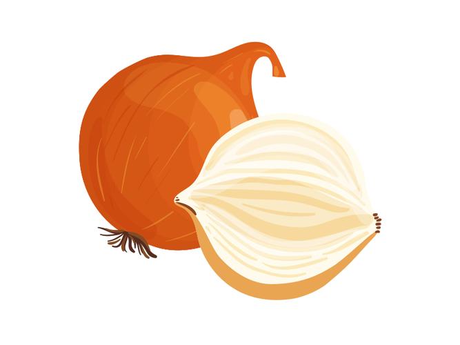 Cipolle di Tropea- Az. Agr. Zanchi